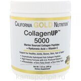 CollagenUp 5000 206g (California gold nutrition)